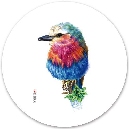 彩铅手绘小鸟