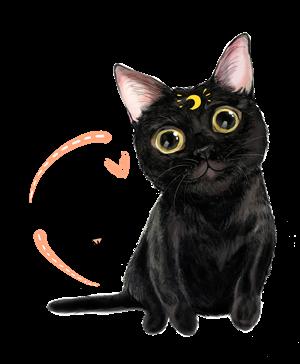 帆布包萌宠-小黑猫